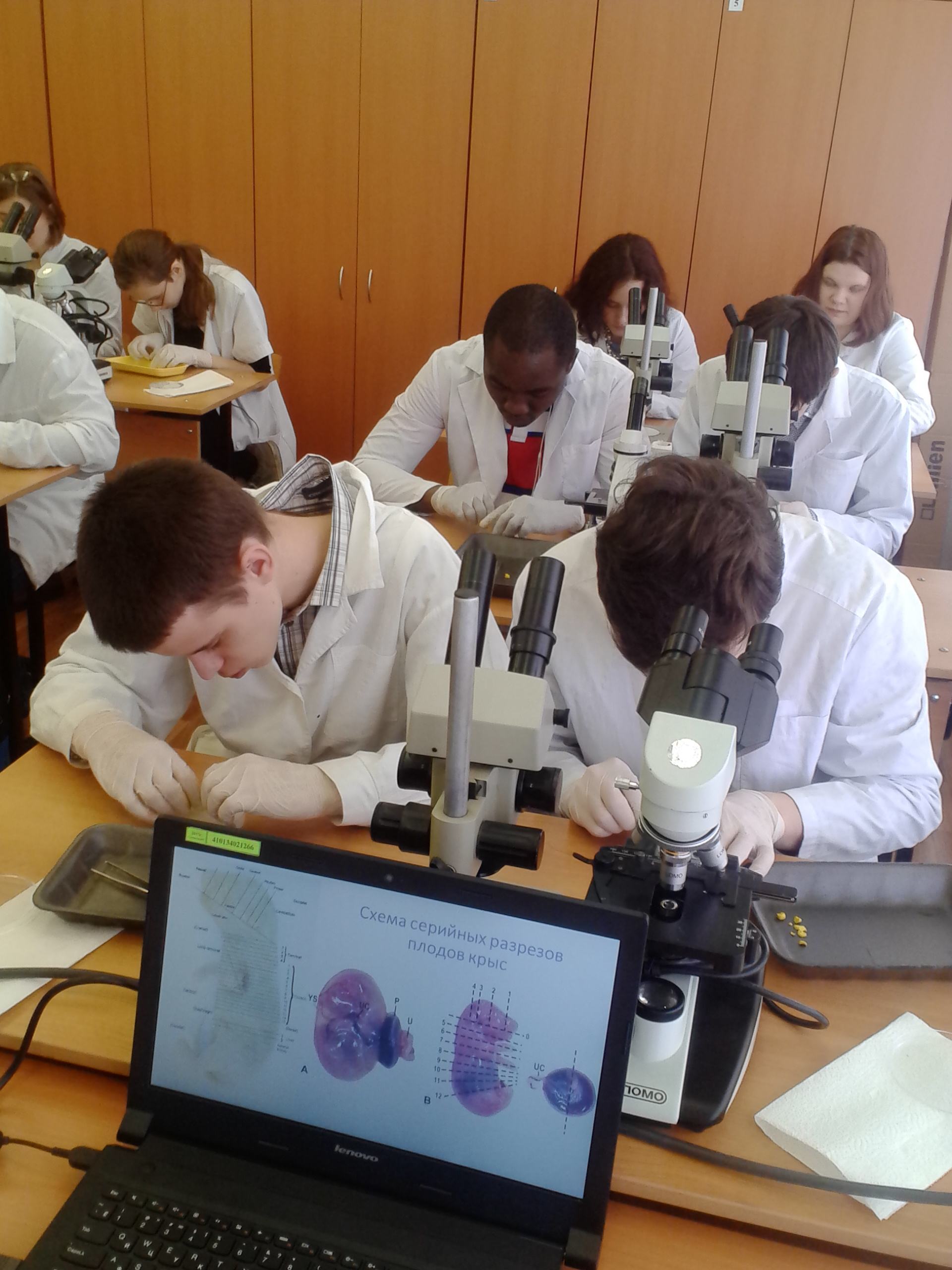 "The demonstration lesson ""Embryotoxicity: Research Morphological  Techniques  of Embryos  in  Toxicology"" for students of the Biology and Chemistry Faculty"